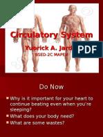 CirculatorySystemPPT Report