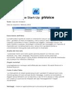 business plan pvoice riccardo andrea peroncini