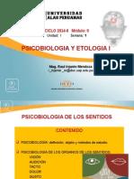 Ayuda 1 Psicobiologia de Los Sentidos