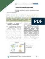Interacciones Hidrofòbicas a Nanoescala
