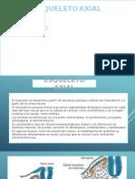 Exposicion de Embriologia Cap.10