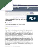 Biomecanica Del Miembro Inferior-las Sentadillas