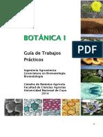 Guía de TP Botánica I 2014 (1)