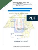 analisis-de-diseño-palta-parte-3-agregar.docx