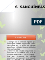 clulassanguneas-130121204440-phpapp02