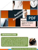 DIAPOS_DE_AUDITORIA.pptx