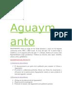El Aguaymanto