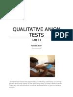 Lab 11qualitative Anion Tests_2