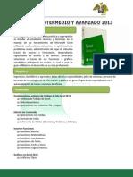 Temario de Ms Excel Intermeido y Avanzado 2013 - Ccimm - Unt