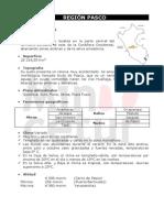 Descripcion General de Region Pasco