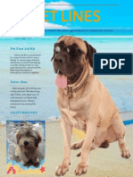 PET LINES Newsletter of Makati Dog and Cat Hospital - May 2015