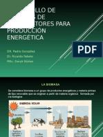 Biomasa y Energia