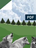 Vilkai, gamta ir išmintis