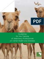 Guidelines for the Training of Veterinary Professionals on Camel Health and Diseases