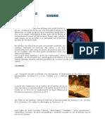 parafilias monografia.docx