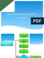 algortimos_geneticos