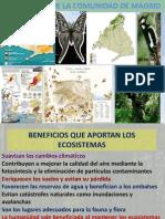 Ecosistemas de La Comunidad de Madrid