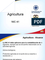 11 NIC 41 Agricultura