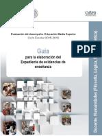 EMS_Desemp_GuiaAca_HUM.pdf