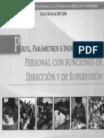 perfil de parametros primaria