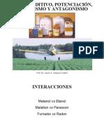 Sinergismo.pdf