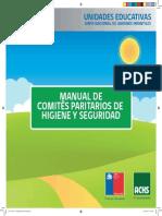 Manual Comites Paritarios de Higiene y Seguridad