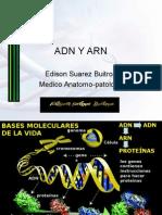 01ADN Y ARN