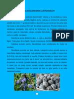 Deshidratare Prune 2014