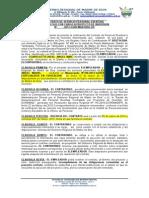 Modelo de Contrato Por Inversion Au00d1o 2013