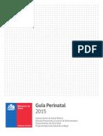 Guia Perinatal de Chile_2015