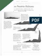 module 8 the iyengar way.pdf