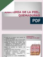 PIEL Y QUEMADURAS
