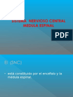 Clase 2 SNC Medula