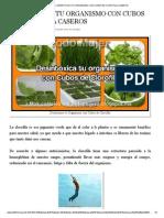 Todo Mujer_ DESINTOXICA TU ORGANISMO CON CUBOS DE CLOROFILA CASEROS.pdf
