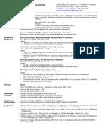 Curriculum-Vitae Luis Cardenas.pdf