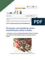 Revista La Patria - Periodico - Boliviano -Ayrampo Semilla Excelte Para Clamar La Fiebre