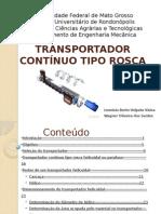Apresentaotransportadorescontinuostiporosca 111025170131 Phpapp02 (1)