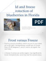 Cold and Freeze Protection of Blueberries in Florida