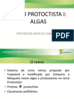 Aula - Algas