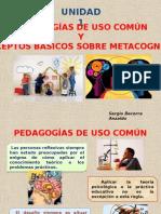 Pedagogias y Metacognicion