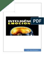 As emoções apostola por.pdf