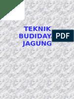 BUDIDAYA JAGUNG