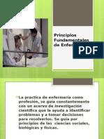 principios fundamentales de enfermera