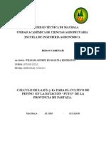 Kc de Pepino Huarquila