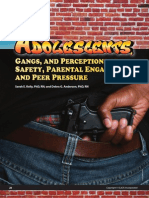 Gangs and Perception of Safety