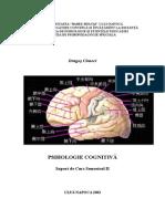 Cognitivasem2