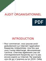 Audit Organisationnel