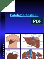 Patologia ficatului
