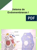 Biologia Celular 3 Endomembranas I (1)