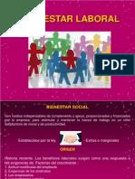 Bienestar Social-120322164851